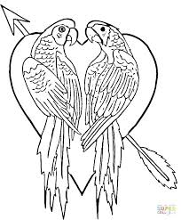 colorful coloring pages impressive idea parrot pictures to color interesting design parrots coloring pages free colored