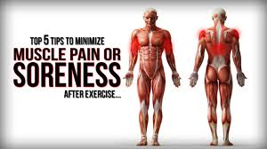 top 5 tips to minimize muscle pain or