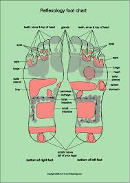 Reflexology Foot Map Diagrams Charts Including Step By