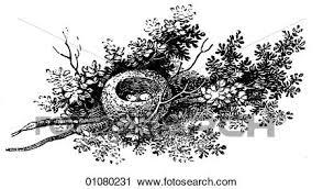 植物相 動物群 線画 A 19世紀 彫版 動物 ほ乳類
