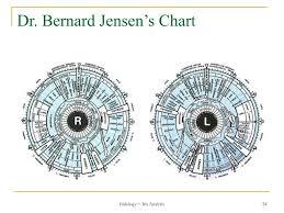 Dr Bernard Jensen Iridology Chart Ppt Iridology Iris Analysis Your Eyes Can Tell If Youre