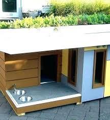 s cool dog house ideas
