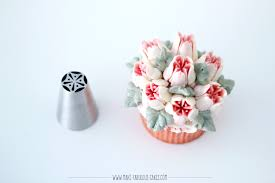 Wilton Decorating Tips Chart Russian Piping Tips Guide Plus Video