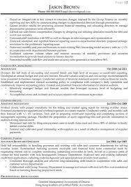 executive cv sample   example executive resume happytom co
