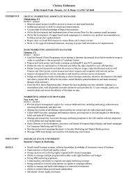 Examples Of Marketing Resumes Marketing Associate Manager Resume Samples Velvet Jobs