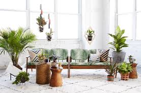 Interior Design Plants Inside House How To Use Plants In The Interior Basics Of Interior