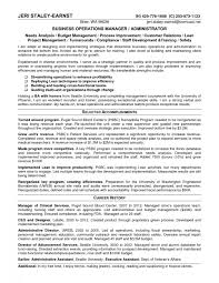 Director Of Operations Resume Business Strategy Plan Example