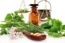 Výsledek obrázku pro homeopati AKH