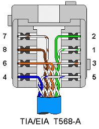cat5 wall socket wiring diagram the wiring cat 5 wiring diagram socket auto schematic