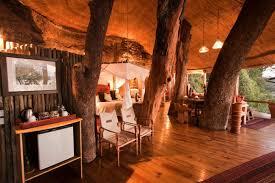 Sycamore Avenue  Treehouse AccommodationTreehouse Accommodation