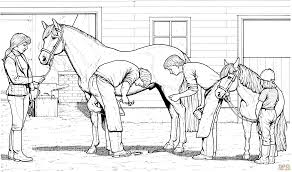 Small Picture Printable 30 Free Printable Realistic Horse Coloring Pages 3811