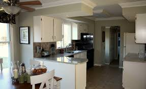 painting kitchen cupboardsPainting Kitchen Cupboards White Before And After  Decor Trends