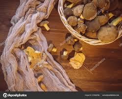 Pozadí Dřeva čerstvě Natrhané Nehty Houby Pohled Shora Hub Dřevěné