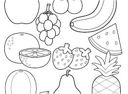Tiger Shark Food Chain Diagram Elegant Food Chain Coloring Page Food