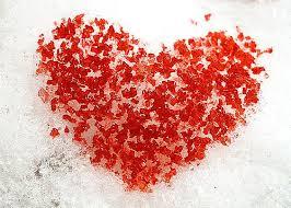 12 Cardiac Symptoms Women Must Never Ignore Heart Sisters
