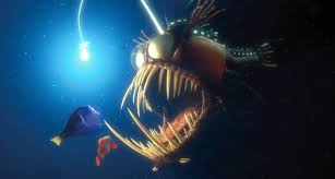 Finding Nemo Light Fish Social Media Scam Uses Twitter And Fake Customer Agents For