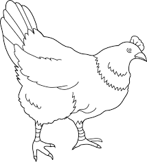 Small Picture Hen Coloring Page 2 Free Clip Art