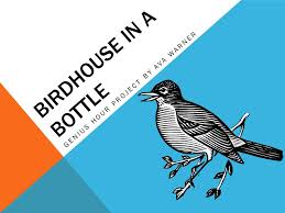 BIRDHOUSE IN A BOTTLE GENIUS HOUR PROJECT BY AVA WARNER. - ppt download