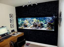 office aquarium. Home Office With Track Lighting And Saltwater Aquarium