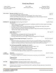 special skills resume examples technical skills to put on a cv special skills resume special skills section resume special skills and interests special skills and abilities