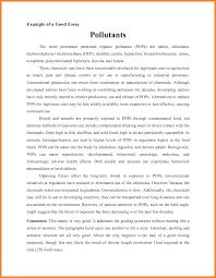 college descriptive essay descriptive essay writing for college university students