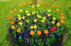 flower garden design. Flower Bed Design Tool Garden