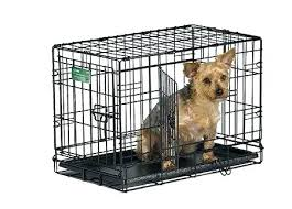 Midwest Dog Crate Size Chart Midwest Life Stages Double Door Dog Crate Goamericanews Info