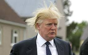 Image result for haircut Donald Trump