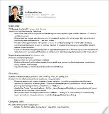 Example Professional Resume Inspiration Sample Professional Resume Templates A Professional Example It