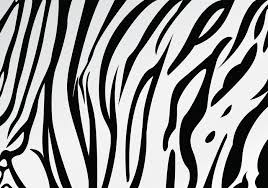 Tiger Pattern Mesmerizing White Tiger Stripe Pattern Vector Download Free Vector Art Stock