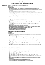 Sql Server Database Administrator Resume Samples Velvet Jobs