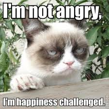 grumpy cat i am smiling. Plain Cat Grumpy Cat Smile I Am Smiling Cat Smile I Am Smiling To 0