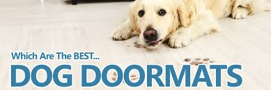 a guide to the best dog doormats