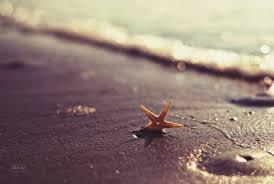 summer beach tumblr. Summer Beach Tumblr Fotos