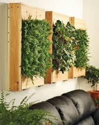Image Garden Back To Article Indoor Planter Box Bmpath Furniture Wall Planter Box 239x300jpg Bmpath Furniture Indoor Planter Box