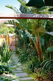 Side Garden Tropical May Top Designs Q Dxy Urg C