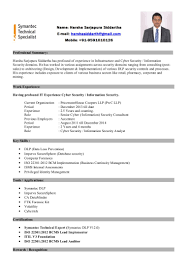 Stunning Resume It Security Consultant Ideas Entry Level Resume