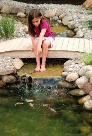 Small Picture Backyard Ponds Ideas httpwwwsitetoddcombackyard ponds