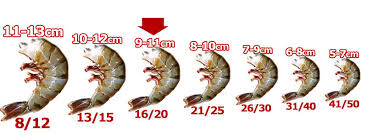 Black Tiger Shrimp Size Chart Sum Your Diet Chart By Seafood And Have A Healthy Life