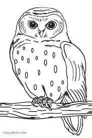 Free Printable Owl Coloring Pages For Kids Owl Coloring Pages Owl