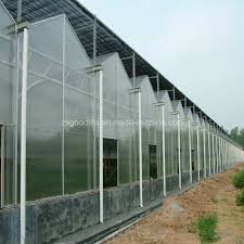 china polycarbonate sheet for greenhouse polycarbonate hollow sheet for greenhouse polycarbonate twin wall sheet polycarbonate triple wall sheet china