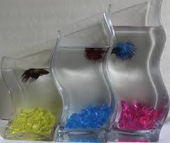 diy betta fish tanks