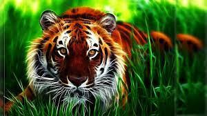 Wallpapers HD Widescreen 3D Tigers ...