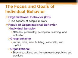 organizational behavior foundation of individual behavior ppt  the focus and goals of individual behavior