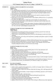 audience marketing manager resume samples velvet jobs