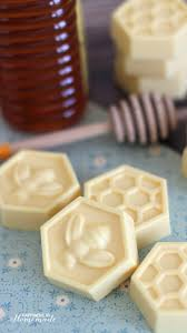10 Minute DIY Milk and Honey Soap - This easy DIY Milk and Honey soap can