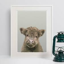 nursery decor highland cow calf animal print