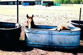 horse trough bathtub trough bathtub trough bathtub top horse trough bathtub metal horse trough bathtub cattle tank bathtub horse trough bathtub ideas