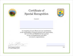 Congratulations Certificate Template Word - 28 Images ...