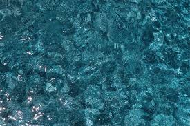 Plasterscapes Colors Of Nature In Your Pool Nptpool Com
